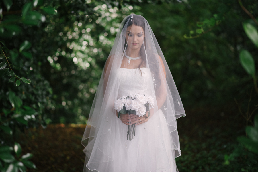 Bridal portrait, beautiful veil