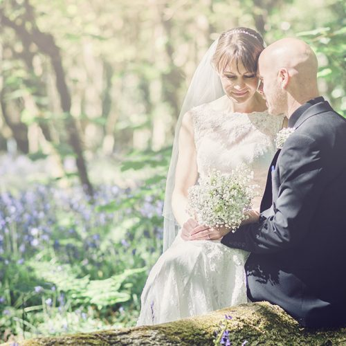 bride and groom sat on a fallen tree in the middle of the woods surrounded by bluebells